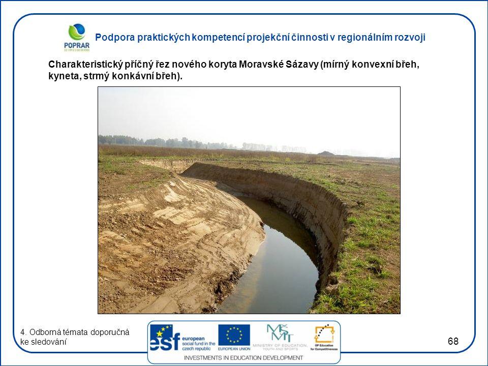 Charakteristický příčný řez nového koryta Moravské Sázavy (mírný konvexní břeh, kyneta, strmý konkávní břeh).