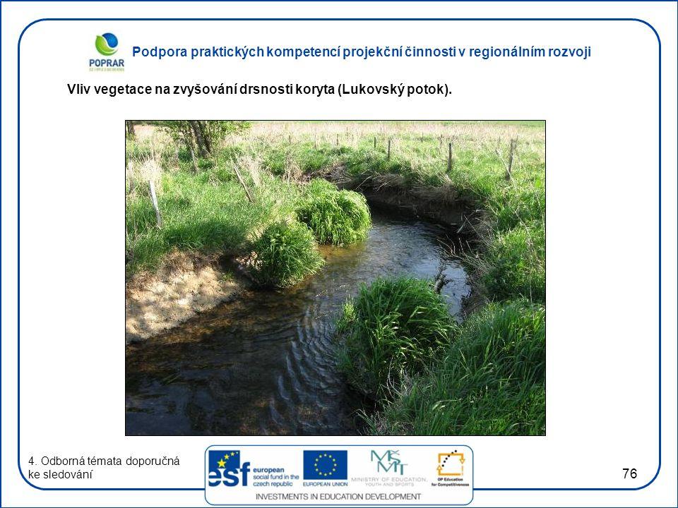 Vliv vegetace na zvyšování drsnosti koryta (Lukovský potok).