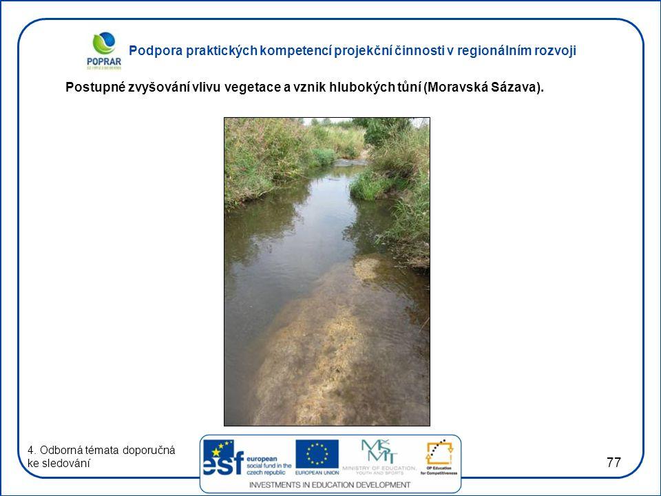 Postupné zvyšování vlivu vegetace a vznik hlubokých tůní (Moravská Sázava).