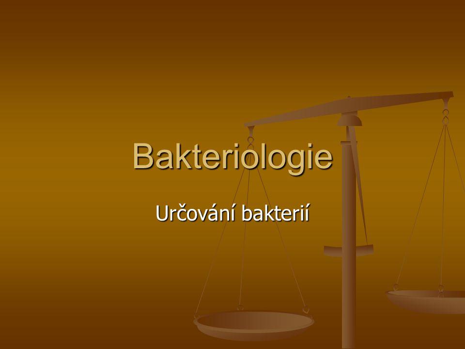 Bakteriologie Určování bakterií