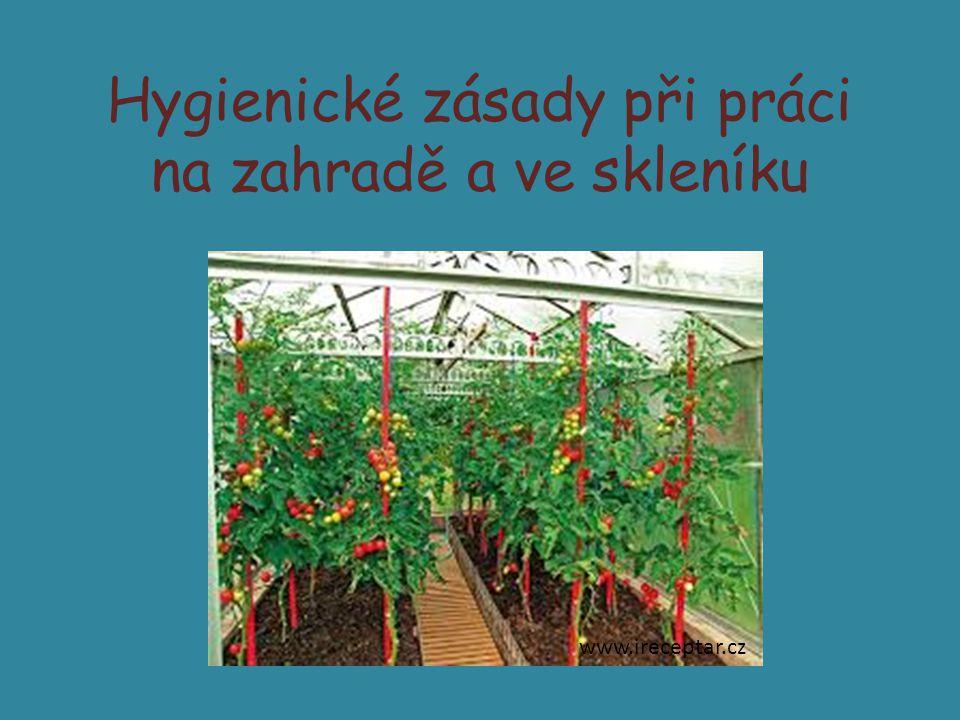 Hygienické zásady při práci na zahradě a ve skleníku