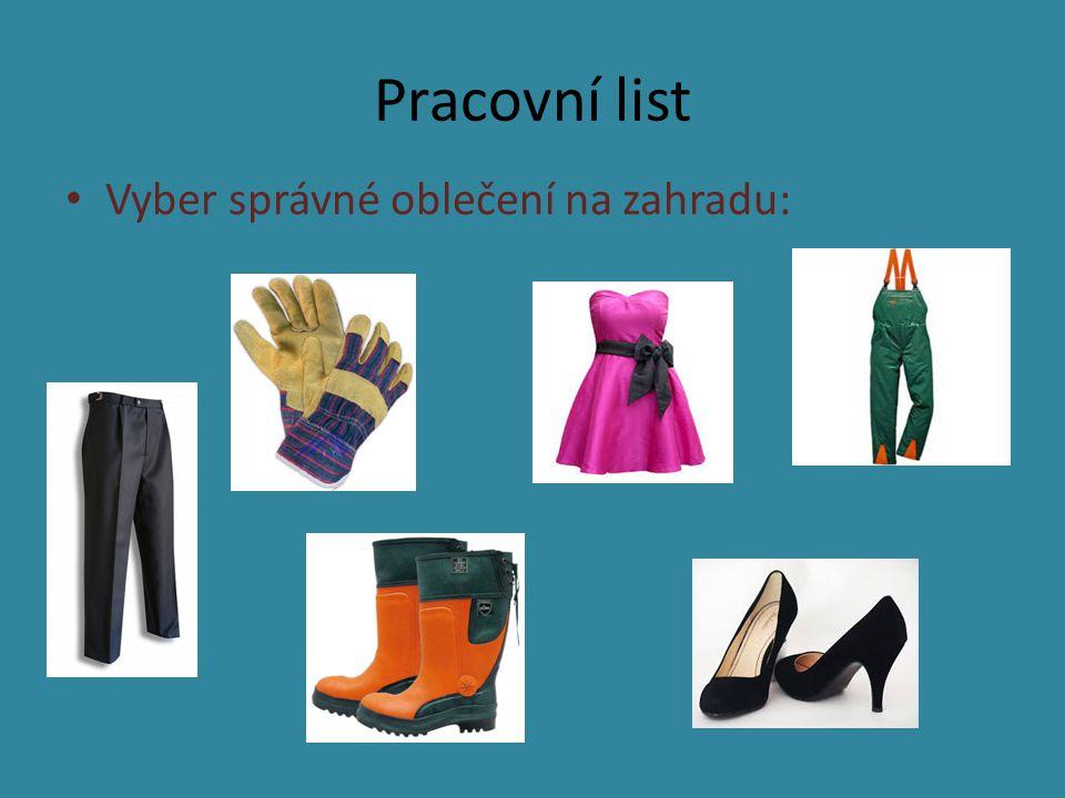 Pracovní list Vyber správné oblečení na zahradu: