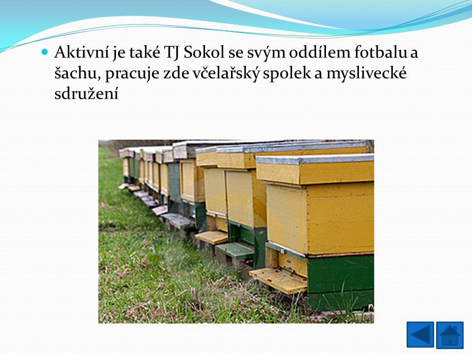 Aktivní je také TJ Sokol se svým oddílem fotbalu a šachu, pracuje zde včelařský spolek a myslivecké sdružení
