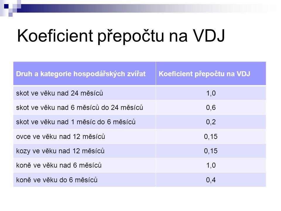 Koeficient přepočtu na VDJ