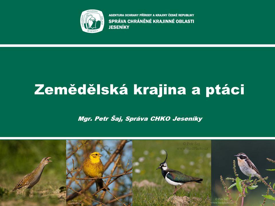 Zemědělská krajina a ptáci Mgr. Petr Šaj, Správa CHKO Jeseníky