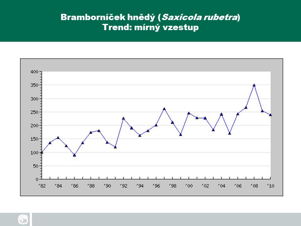 Bramborníček hnědý (Saxicola rubetra) Trend: mírný vzestup