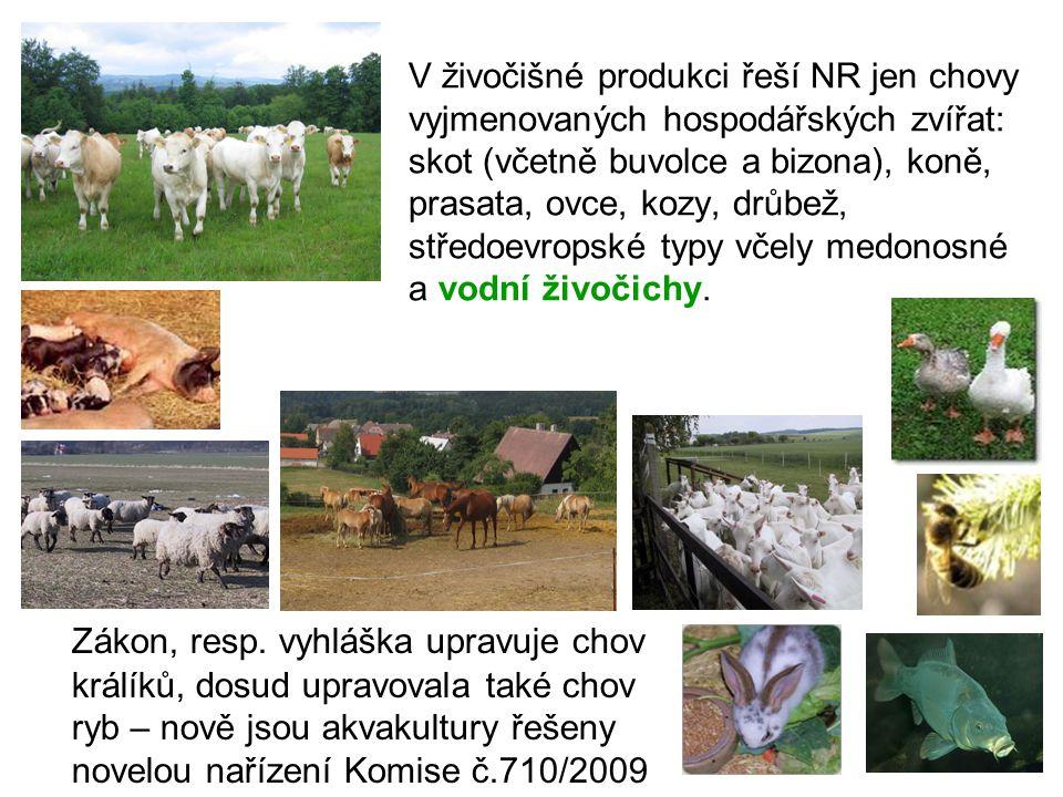 V živočišné produkci řeší NR jen chovy vyjmenovaných hospodářských zvířat: skot (včetně buvolce a bizona), koně, prasata, ovce, kozy, drůbež, středoevropské typy včely medonosné a vodní živočichy.