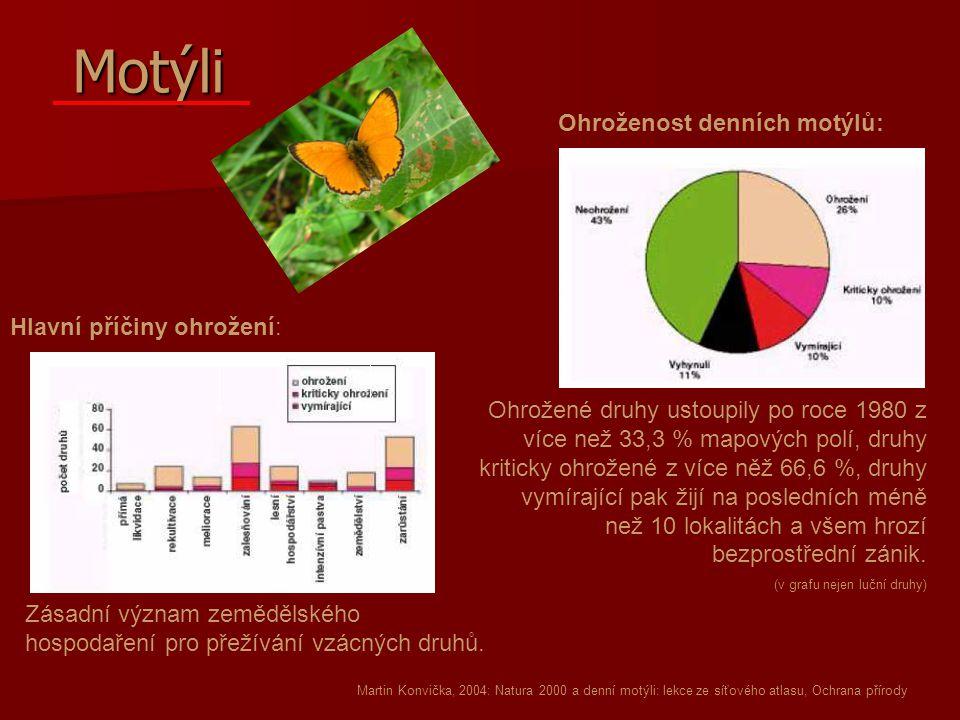 Motýli Ohroženost denních motýlů: Hlavní příčiny ohrožení: