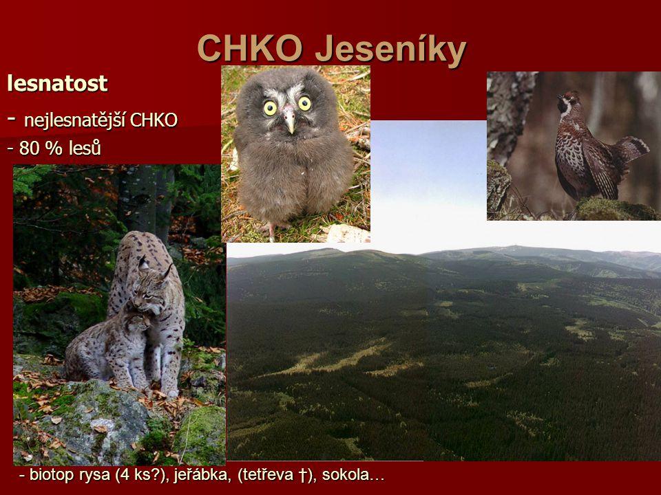 CHKO Jeseníky - nejlesnatější CHKO lesnatost - 80 % lesů