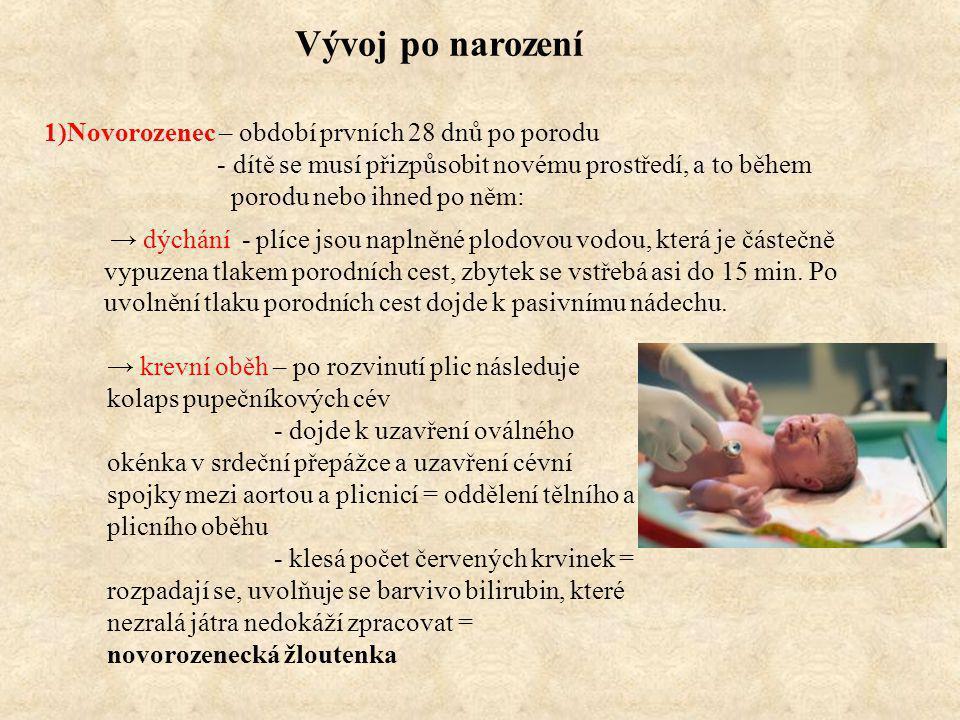 Vývoj po narození 1)Novorozenec – období prvních 28 dnů po porodu
