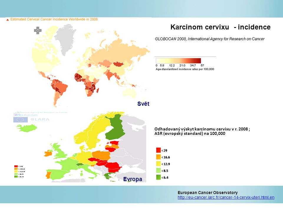 Karcinom cervixu - incidence