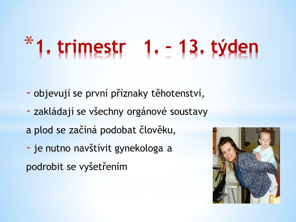 1. trimestr 1. – 13. týden objevují se první příznaky těhotenství,