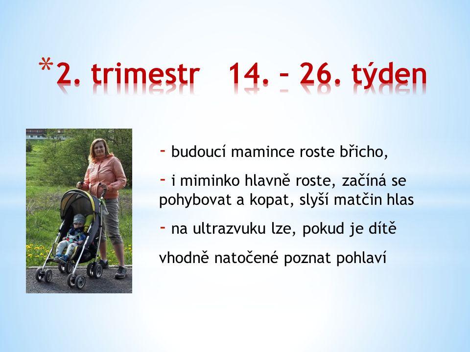 2. trimestr 14. – 26. týden budoucí mamince roste břicho,
