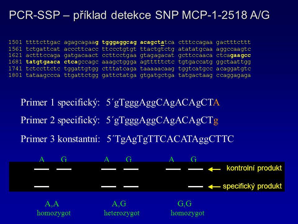 PCR-SSP – příklad detekce SNP MCP-1-2518 A/G