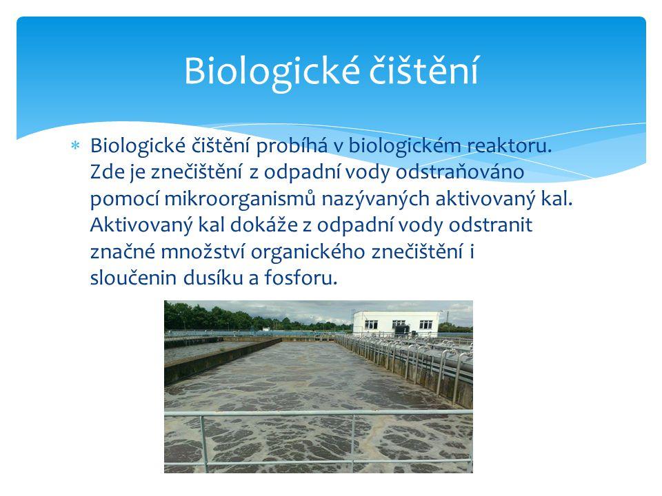Biologické čištění