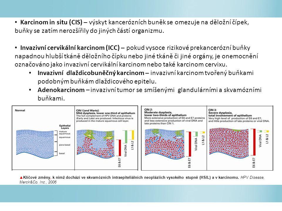Karcinom in situ (CIS) – výskyt kancerózních buněk se omezuje na děložní čípek, buňky se zatím nerozšířily do jiných částí organizmu.