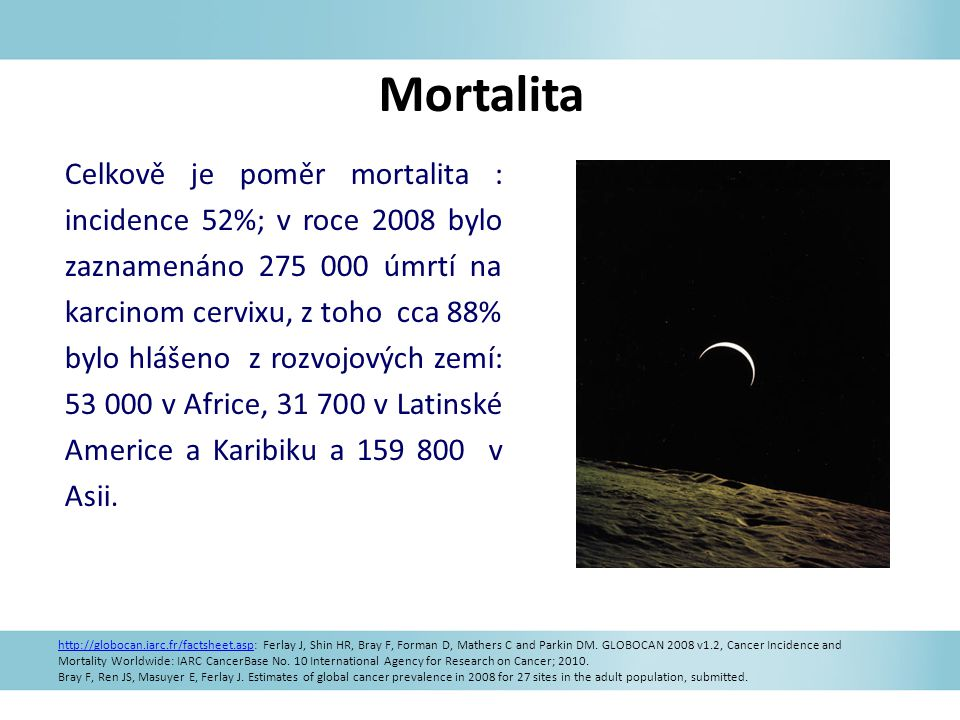 Mortalita