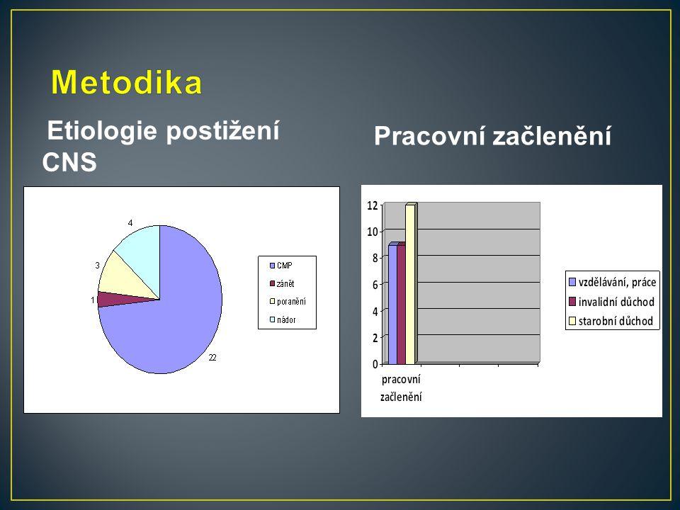 Metodika Etiologie postižení CNS Pracovní začlenění