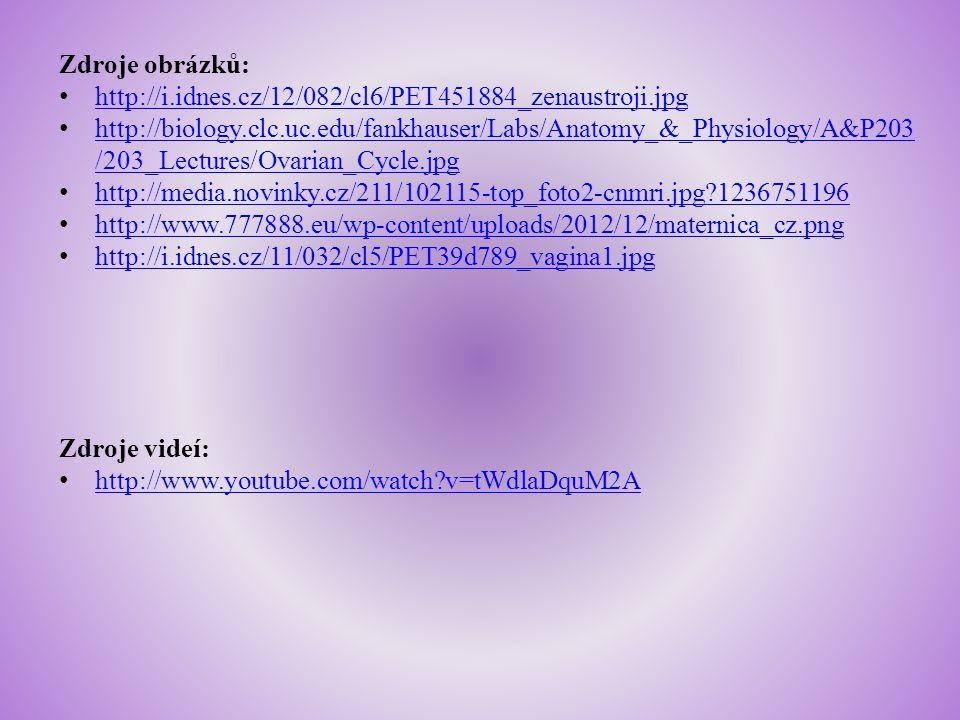Zdroje obrázků: http://i.idnes.cz/12/082/cl6/PET451884_zenaustroji.jpg.