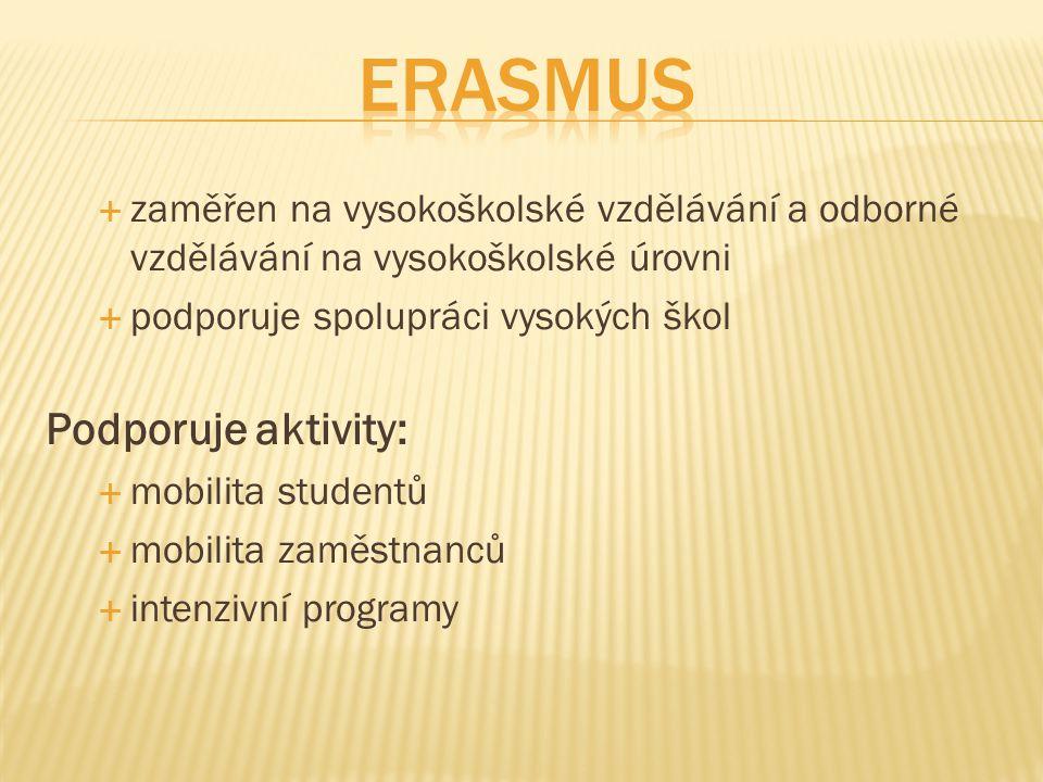 Erasmus Podporuje aktivity: