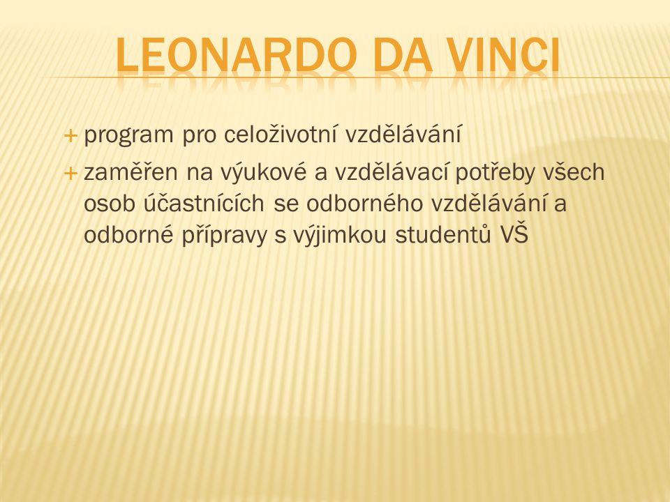 Leonardo da Vinci program pro celoživotní vzdělávání