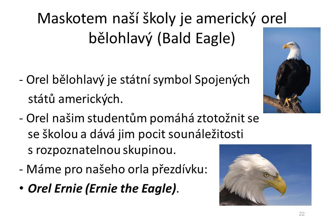 Maskotem naší školy je americký orel bělohlavý (Bald Eagle)