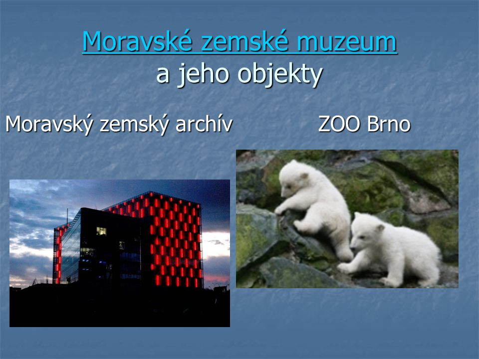 Moravské zemské muzeum a jeho objekty