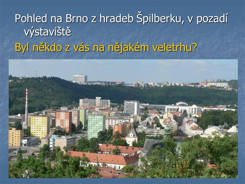 Pohled na Brno z hradeb Špilberku, v pozadí výstaviště Byl někdo z vás na nějakém veletrhu
