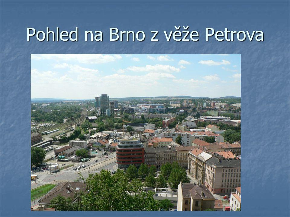 Pohled na Brno z věže Petrova