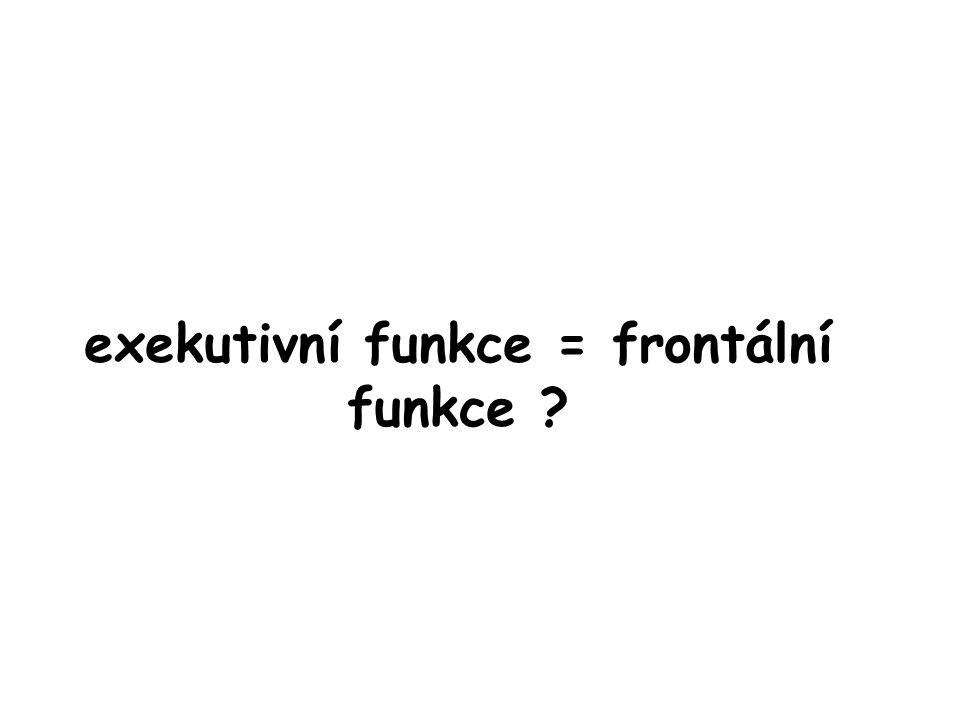 exekutivní funkce = frontální funkce