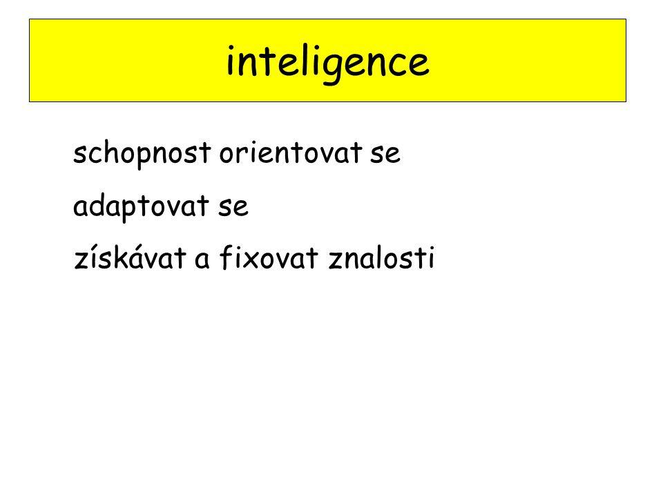 inteligence schopnost orientovat se adaptovat se