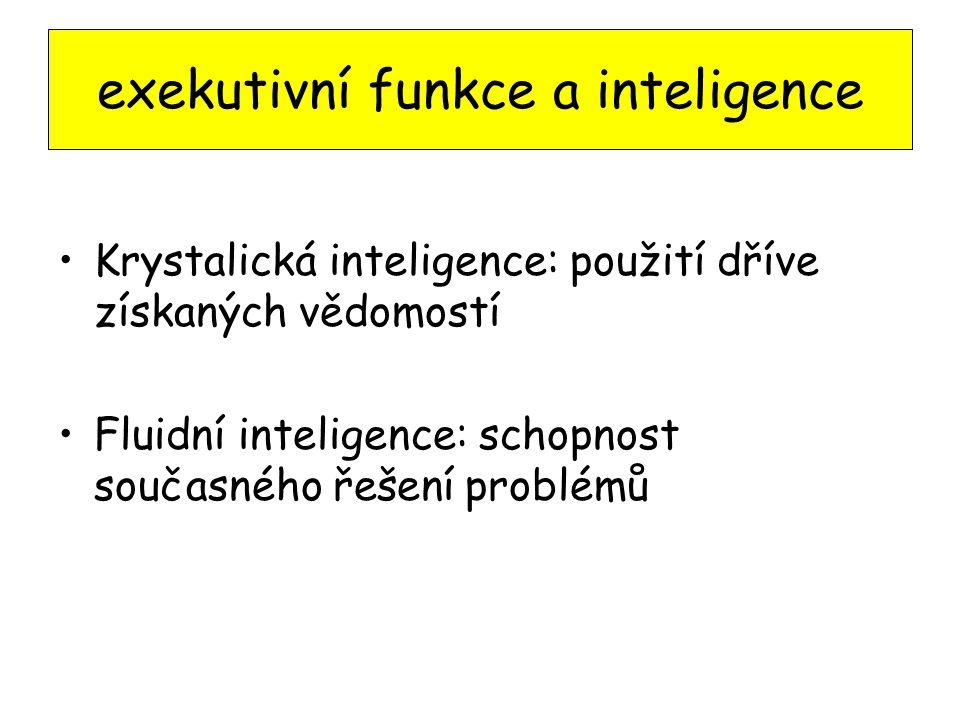 exekutivní funkce a inteligence