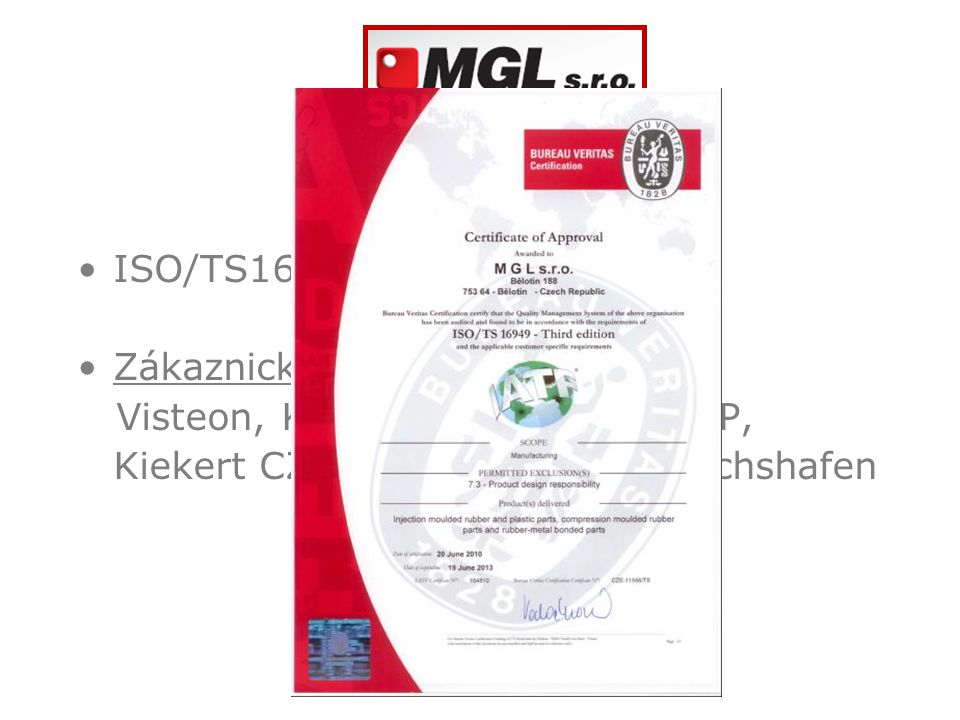 Kvalita ISO/TS16949:2009 Zákaznické audity: