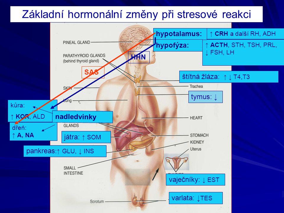 Základní hormonální změny při stresové reakci