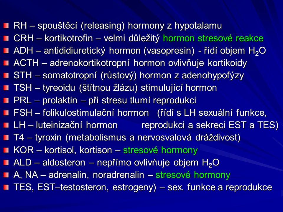 RH – spouštěcí (releasing) hormony z hypotalamu