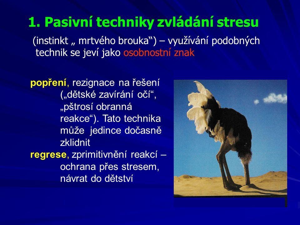 1. Pasivní techniky zvládání stresu