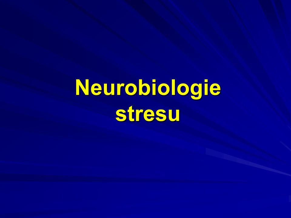 Neurobiologie stresu