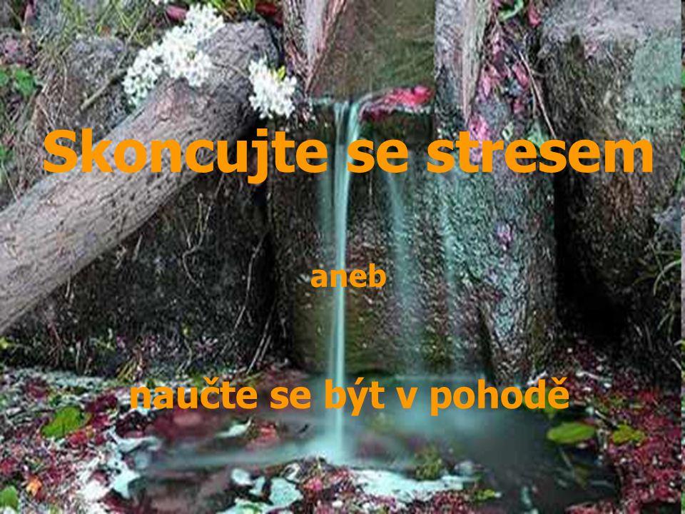 Skoncujte se stresem aneb naučte se být v pohodě