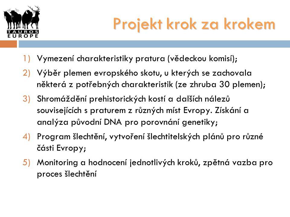 Projekt krok za krokem Vymezení charakteristiky pratura (vědeckou komisí);