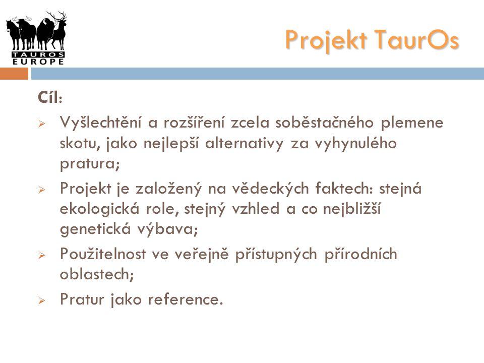 Projekt TaurOs Cíl: Vyšlechtění a rozšíření zcela soběstačného plemene skotu, jako nejlepší alternativy za vyhynulého pratura;