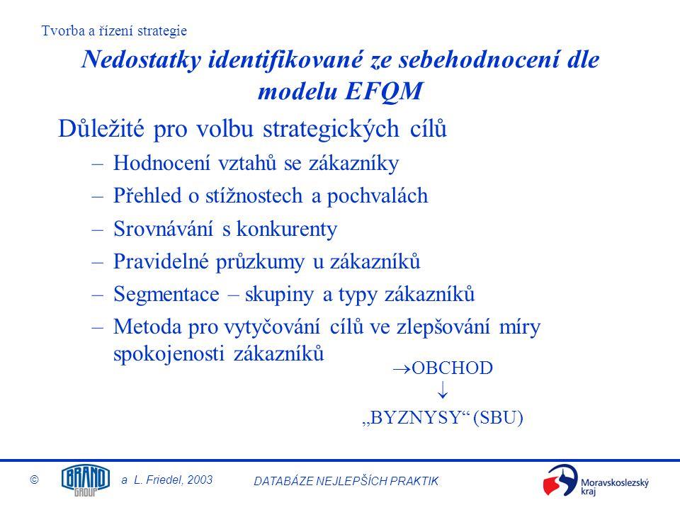 Nedostatky identifikované ze sebehodnocení dle modelu EFQM
