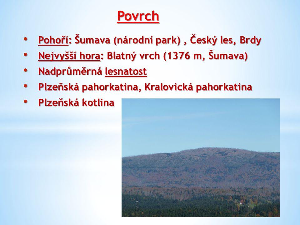Povrch Pohoří: Šumava (národní park) , Český les, Brdy