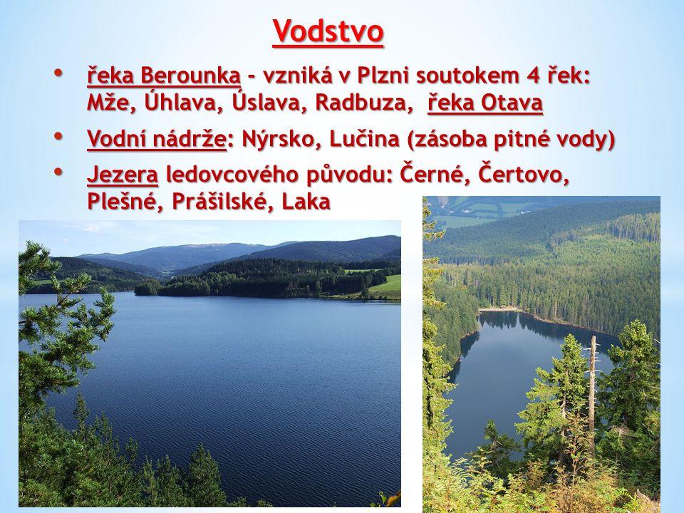 Vodstvo řeka Berounka - vzniká v Plzni soutokem 4 řek: Mže, Úhlava, Úslava, Radbuza, řeka Otava. Vodní nádrže: Nýrsko, Lučina (zásoba pitné vody)