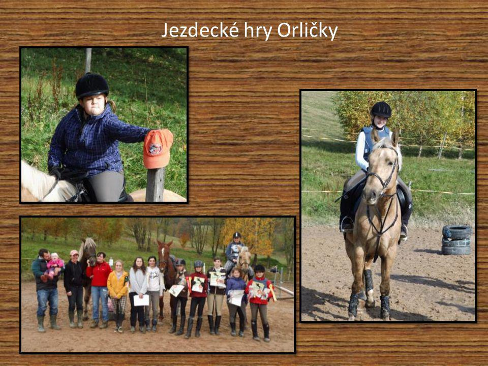 Jezdecké hry Orličky