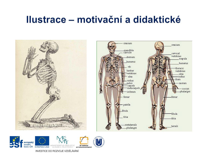 Ilustrace – motivační a didaktické