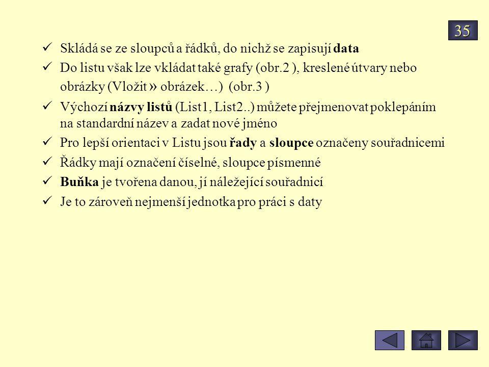 35 Skládá se ze sloupců a řádků, do nichž se zapisují data