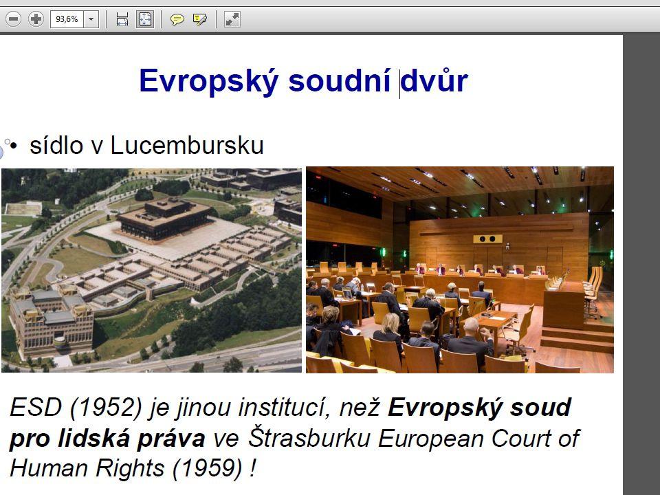 dky Evropského soudu pro lidská práva