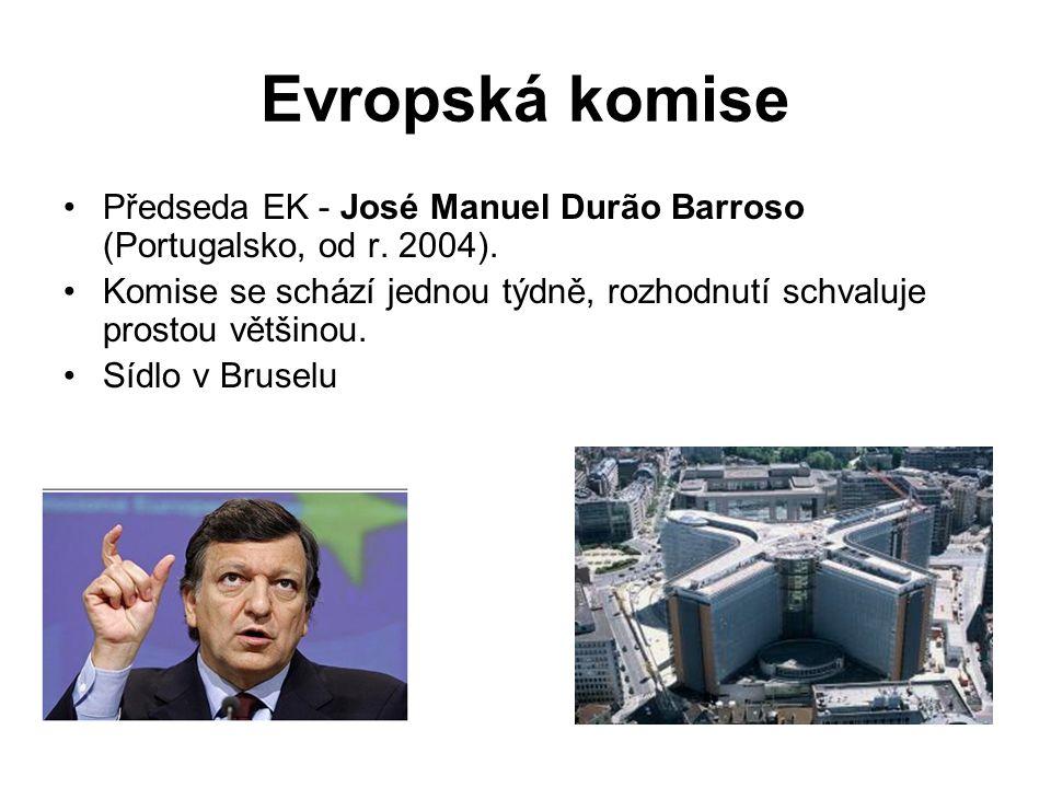 Evropská komise Předseda EK - José Manuel Durão Barroso (Portugalsko, od r. 2004).