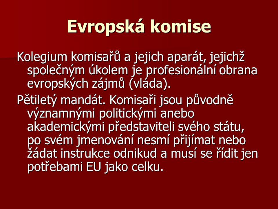 Evropská komise Kolegium komisařů a jejich aparát, jejichž společným úkolem je profesionální obrana evropských zájmů (vláda).