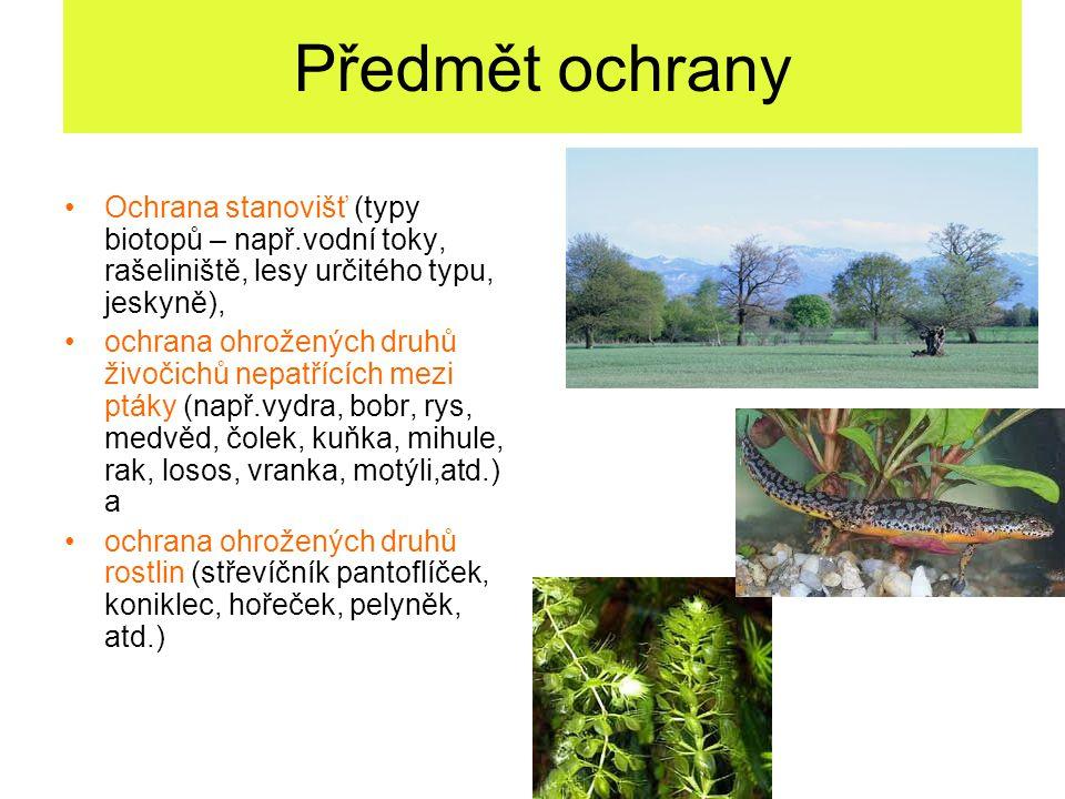 Předmět ochrany Ochrana stanovišť (typy biotopů – např.vodní toky, rašeliniště, lesy určitého typu, jeskyně),